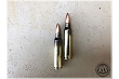 Stryker 223 -  62 gr FMJ M855 Steel Core -250 Rounds (From Never Fired FC Brass/Pulled Bullets)