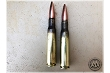 Stryker - 50 BMG, M33 Ball 660 Gr. FMJ, 20 Rounds. (LC Brass / LC Pulled Bullets)