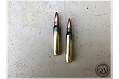 Stryker 5.56 -  62 gr FMJ M855 Steel Core -1,000 Rounds (From Never fired LC Brass/Pulled Bullets)