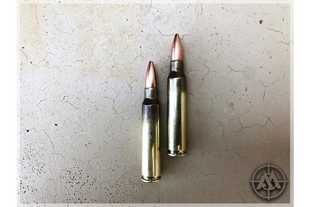 Stryker 223 -  62 gr FMJ M855 Steel Core -1,000 Rounds (From Never Fired FC Brass/Pulled Bullets)